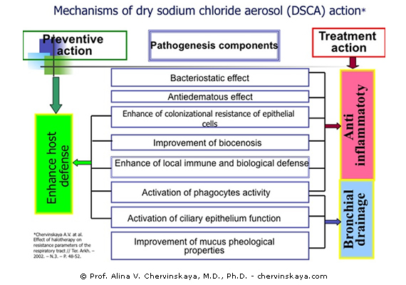Effect of Dry Sodium Chloride Aerosol on Bronchopulmonary System